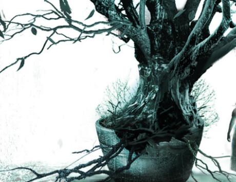 Frances Hardinge   The Lie Tree