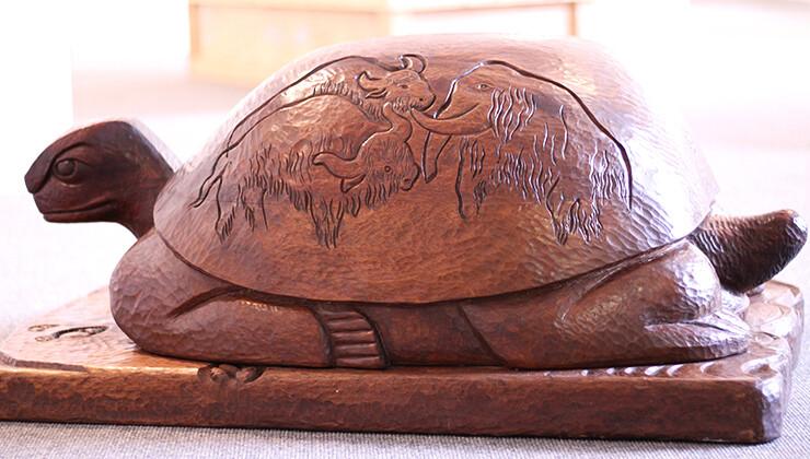 Story Islands & Wilhelma the Tortoise: Video Workshop