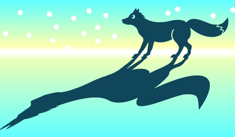 Schools Workshops: Winter Tales & Animal Shadows