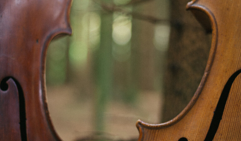 Spike Cello Festival at The Ark 2020